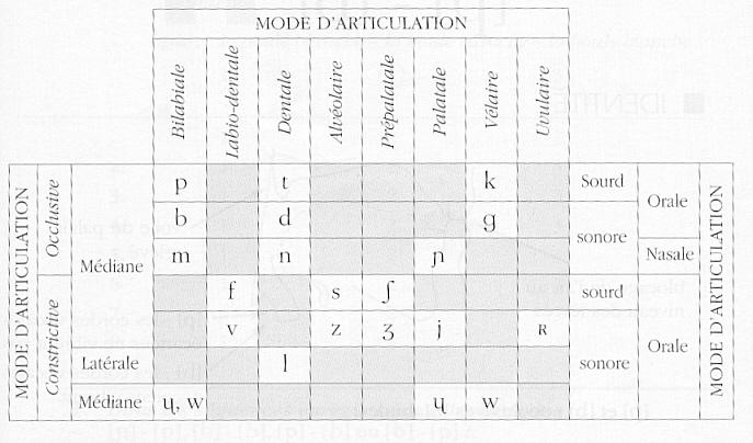 consonnes, FLE, cours de phonétique